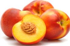 Персиковое масло для волос: от сухих кончиков и для блеска