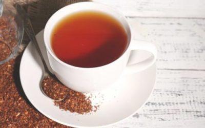Чай ройбуш: состав полезные свойства и противопоказания