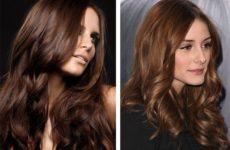 Каштановый цвет волос: кому идет (фото)