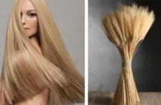 Пшеничный цвет волос — кому идет и как покрасить волосы в этот оттенок